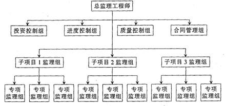 图5-18直线职能制监理组织形式