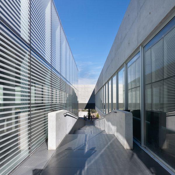 西班牙马德里 德利布大学
