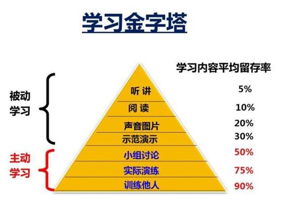 金字塔 手册 logo语言