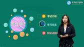 2020年监理竞博app考试辅免费视频